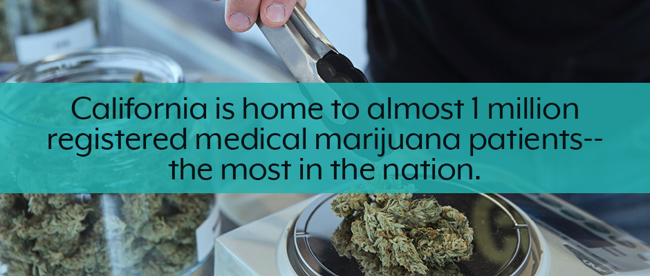 California medical and recreational marijuana business plan facts callout.