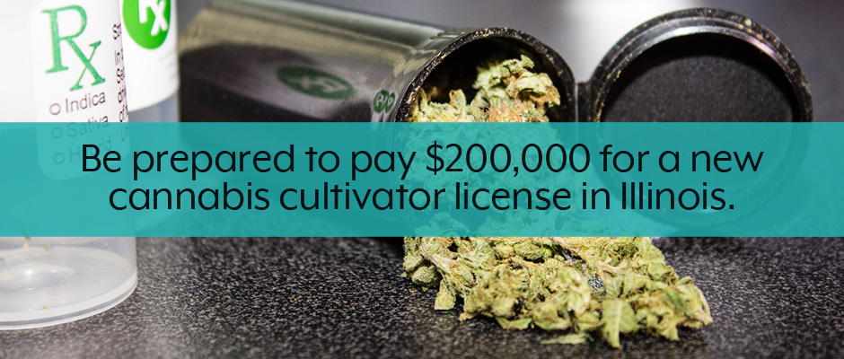 Illinois medical and recreational marijuana business plan facts callout.