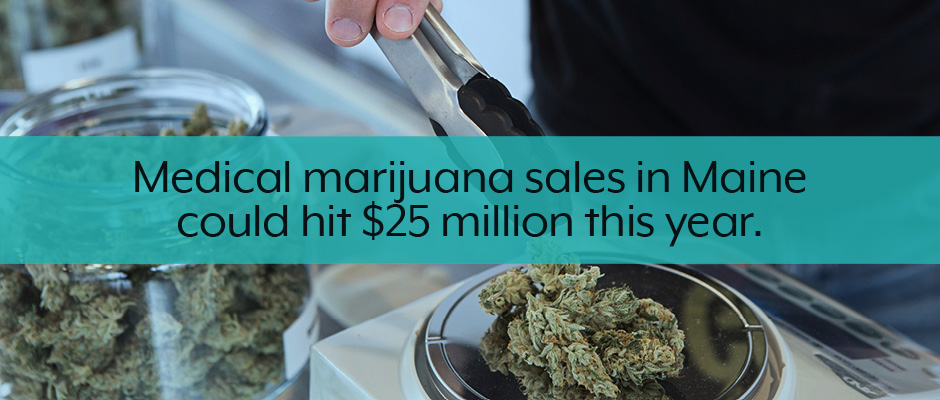 Maine medical and recreational marijuana business plan facts callout.