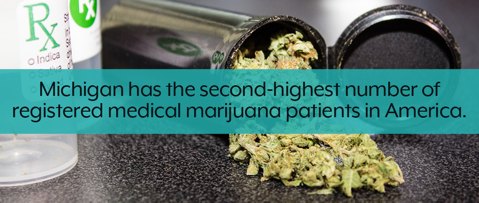 Michigan medical and recreational marijuana business plan facts callout.