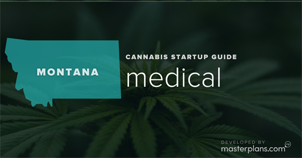 Montana medical cannabis business startup guide and planning banner